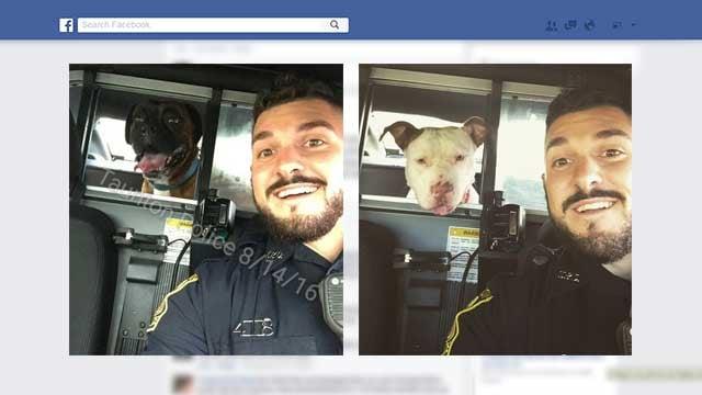 (Photos: Facebook / Taunton Police Dept.)