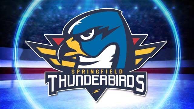 (Logo Courtesy: Springfield Hockey LLC / Background Image: MGN Online)