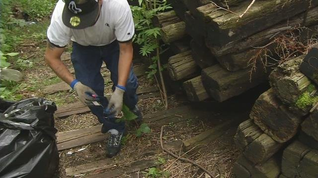 More than 100 needles found on popular walking path near Holyoke school