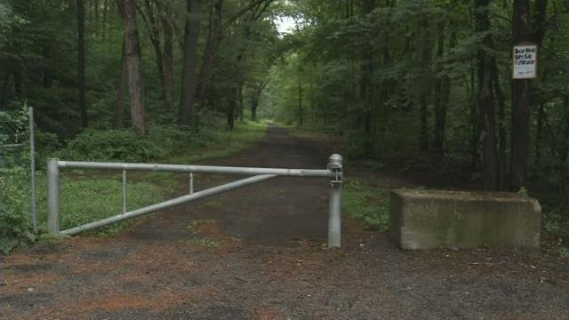 West Springfield Environmental Committee issues warning on coyotes