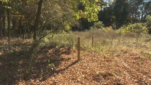 West Springfield residents concerned over proposed dog park