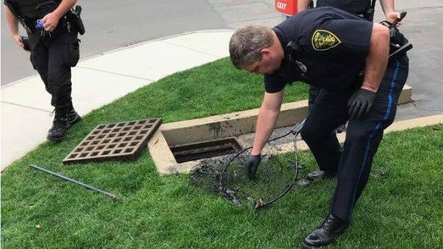 (Photo: Facebook / Arlington Police)