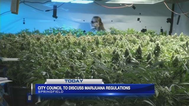 Springfield city council to discuss marijuana regulations