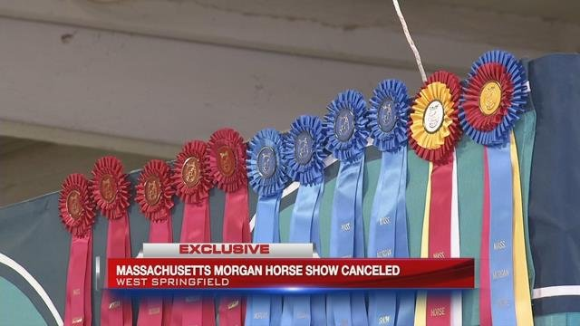 Horse show in West Springfield canceled after horse becomes ill