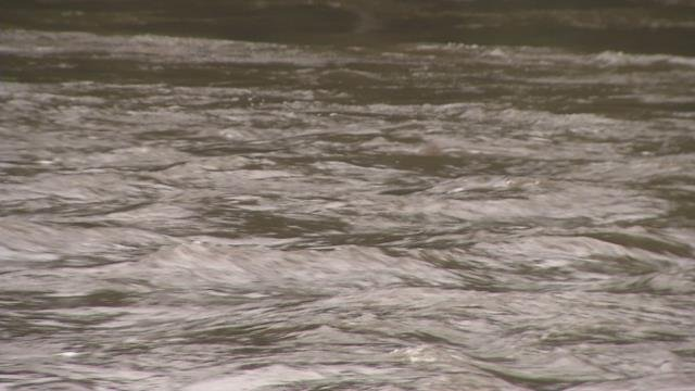 Free fly fishing clinic held in Westfield despite the rain