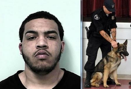 Springfield Police K-9 Officer Tony Tyler and his German Shepherd K-9, Ares, were able to track down 19-year-old Holyoke resident Victor Martinez in the rain.