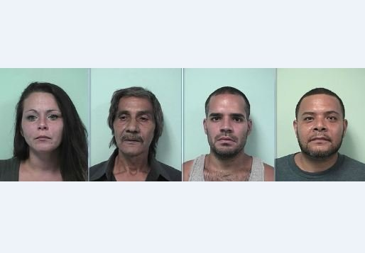 Mug shots of Corrine Salkovitz, Pablo Santiago, Ricardo Cruz and Osvaldo Santos. (Springfield PD)
