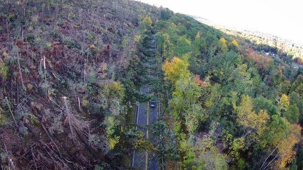 An aerial shot shows how powerful the damaging winds were in Easthampton. (Patrick Brough of Easthampton)