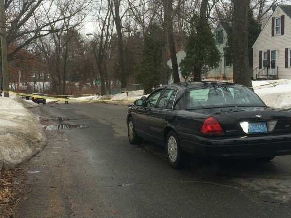 Police investigated a homicide in East Springfield on Sunday afternoon.