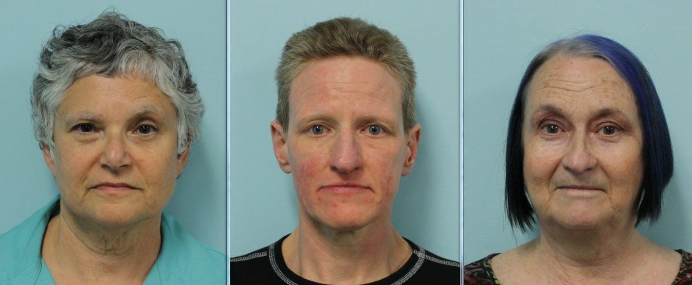 Mug shots of Catherine Woolner, Holly Richardson and Maureen Briggs-Carrington. (Source: SPD)